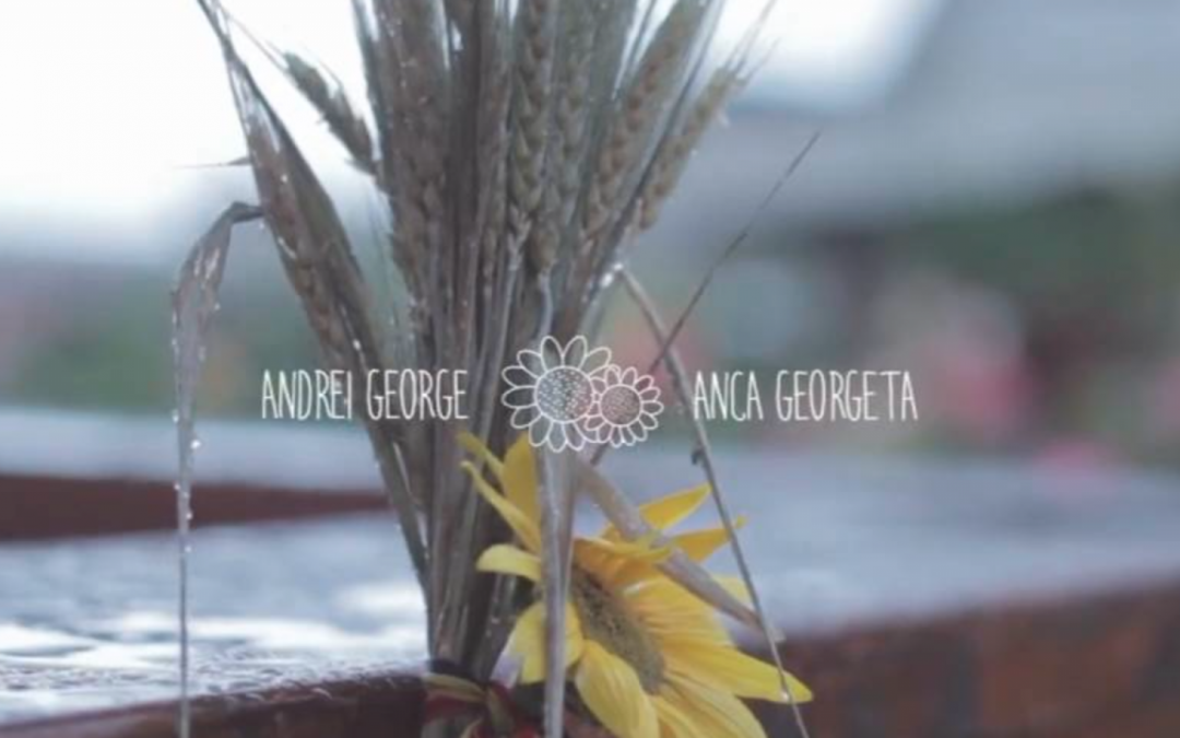 Andrei & Anca 24 august 2014 // Traditional Romanian Wedding